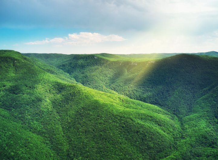 envato-greem-hills-of-mountain-forests-5JQRGHR-2