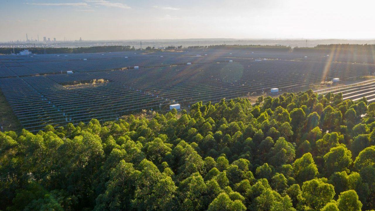 the-solar-energy-435MQ7Z