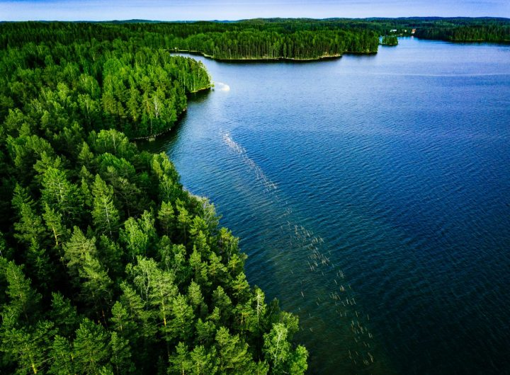 aerial-view-of-blue-lake-and-green-forest-in-finla-FXHX2DF