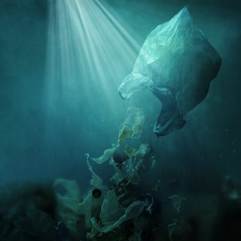 floating-plastic-bag-dispersing-waste-and-pollutin-C8S4GQK