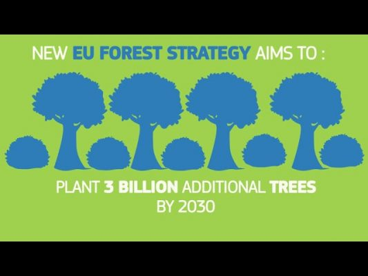 EUGreenDeal Forest