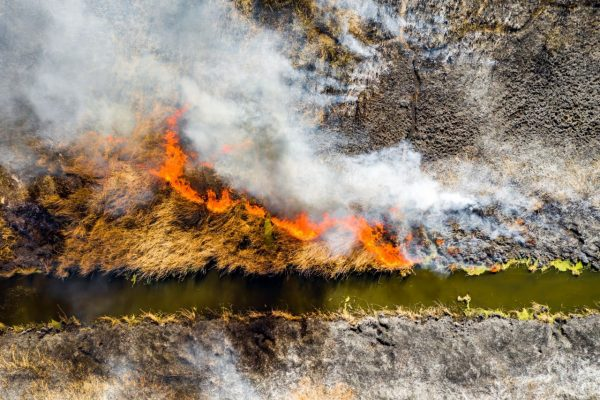 aerial-view-of-wildfire-on-the-field-huge-clouds-o-PQ8EX6R