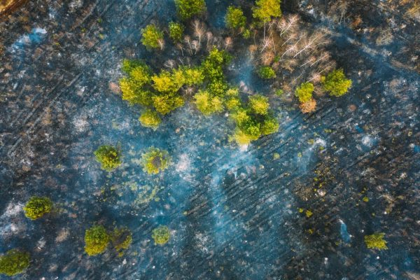 aerial-view-spring-dry-grass-burns-during-drought--Y4QAH5L