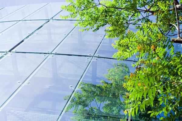 green-business-P9N5MRU