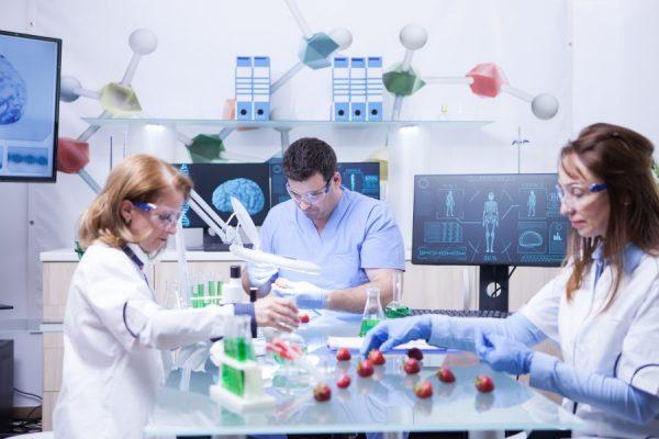 team-of-biochemist-work-with-genetically-modified-2021-08-27-17-07-36-utc