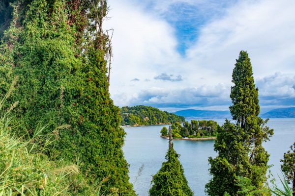 trees-on-corfu-island-coast-greece-AYRDT4M