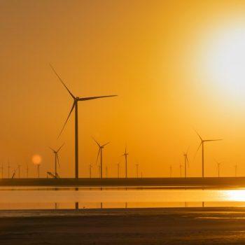 wind-turbines-on-the-seashore-at-sunset-green-ene-2021-08-29-17-32-47-utc